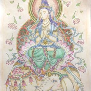 美しい仏画編より白象に乗った【普賢菩薩さま】の塗り絵が完成