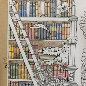 「森が奏でるラプソディー」より本棚のあるお部屋のページの塗り絵