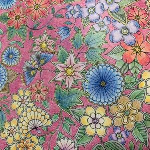 1月の和風のイメージで塗ってみた『ひみつの花園』配色も楽しめた