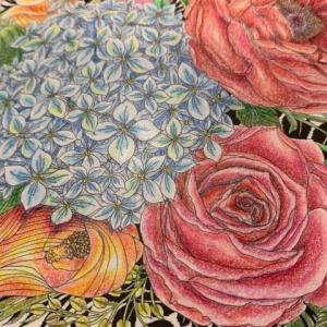 プリズマカラーで明るい花束を塗ってみた『世界一美しい花のぬり絵』