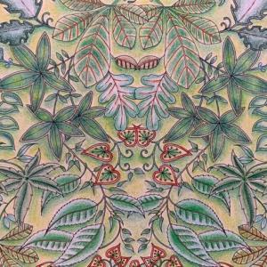 ひみつの花園より【葉っぱのシンメトリーの塗り絵】新緑っぽく完成?