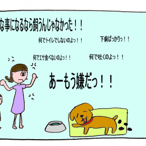 不幸犬ロペのお話④ ~~ファイナル2~~