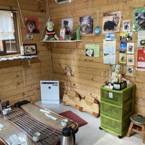 【ランチ】専用ログハウスは犬OK!伊豆高原のお蕎麦屋さん「蕎仙」