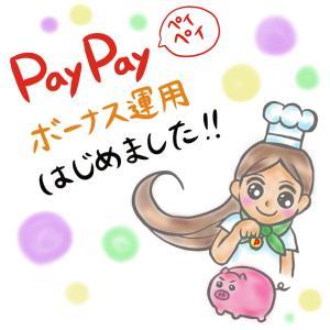 PayPayボーナス運用 はじめました 運用実績 公開中