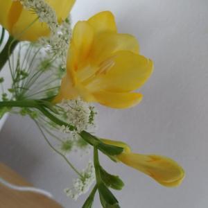 お花のある暮らし・2月のお花
