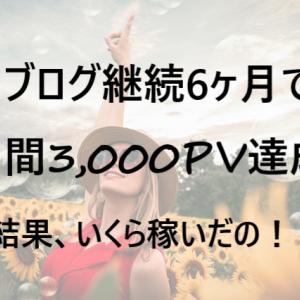 【祝!】月間3,000PVを達成!~やってきたことは?で、いくら稼げたの?~