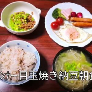 そらちゃんまだ食べたいの❓ 朝食は和食 鶏手羽元トマト煮込みスープ