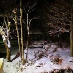秋田県のホテルロビーから雪降る動画を撮影 青池 五能線