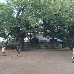 ボールの蹴り方はおじいちゃんに習え