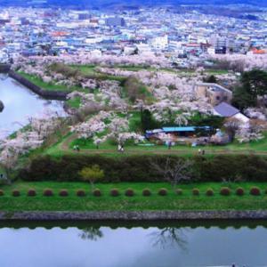 春の函館おすすめお花見スポット3選!ご家族で楽しめる春限定のイベントも必見!