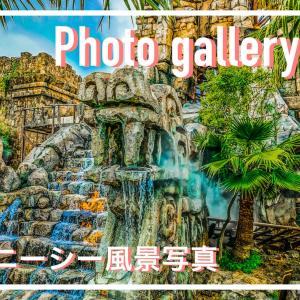 Photo gallery, #01 ディズニーシーの風景写真