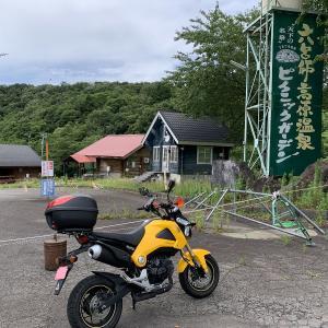 急な休みだけど暑いので六呂師高原と麻那姫湖(またバイク・・・)