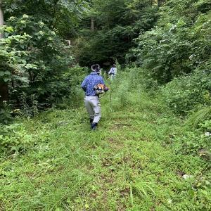 4連休1日くらい・・・涼を求めて国見岳と刈安山(またバイク)
