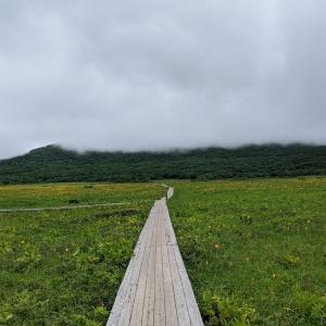 【会津に住むおじさんが日曜日に雄国沼に行って感動して泣いた話】