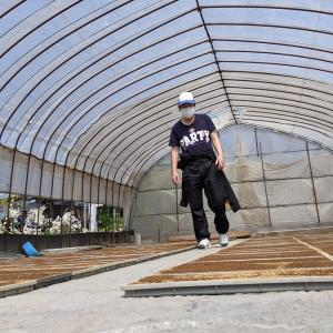 【農作業】会津に住むおじさんが米の苗の種まきをした話。【令和3年】