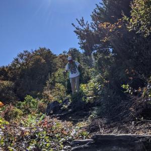 【うつくしま百名山】会津に住むおじさんが2週連続で只見町に行き、会津朝日岳(1,624m)に登った話。【只見四名山】