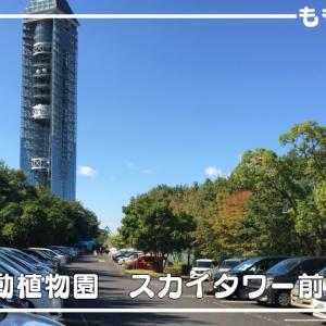 東山動植物園の有料・無料駐車場、路上駐車のポイント、注意点のまとめ
