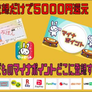 登録だけで5000円還元、こどものマイナポイントどこに登録する?
