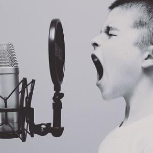 【アラフィフからのストナン】トークの内容よりも声そのものが重要だと思う件
