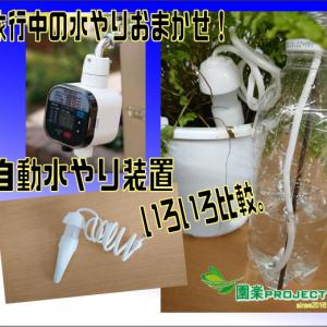 旅行中の水やりおまかせ!自動水やり装置いろいろ比較。