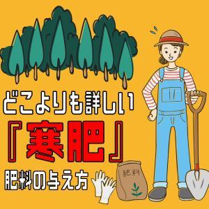 どこよりも詳しい『寒肥』肥料の与え方