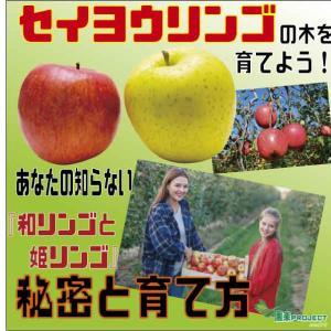 セイヨウリンゴの木を育てよう!あなたの知らない『和リンゴと姫リンゴ』秘密と育て方