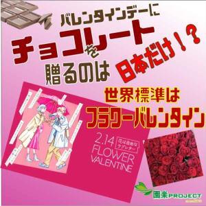 バレンタインデーにチョコレートを贈るのは日本だけ!?世界標準はフラワーバレンタイン