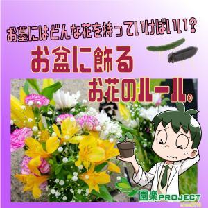 お盆に飾るお花のルール。お墓にはどんな花を持っていけばいい?