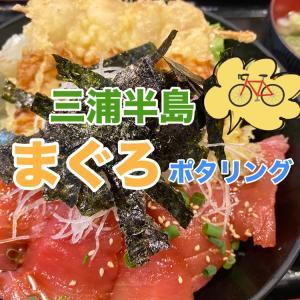 【三浦半島】くろば亭の絶品まぐろ!おいしいポタリングコース