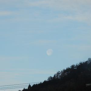 今朝の空「月は沈んで・・陽が昇ってくる」