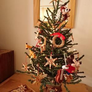 着替えたクリスマスツリー