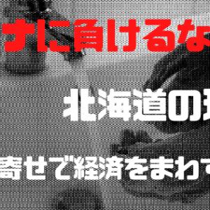 コロナウィルス 北海道の対応【鈴木直道知事】