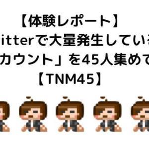 【体験レポート】Twitterで大量発生している「あのアカウント」を45人集めてみたよ【TNM45】