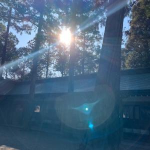 大神神社の太陽パワーをどうぞ♡