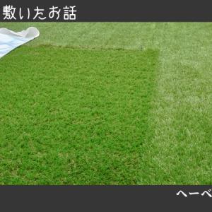【DIY】屋上に人工芝を敷いたお話