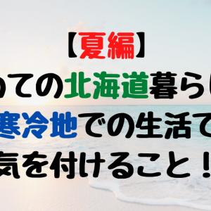 【夏編】初めての北海道暮らし!寒冷地での生活で気を付けること!