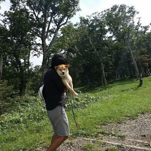 第2回犬連れ旅行②~那須の山と川~