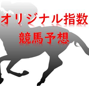 5月30日(土) 京都競馬場 8R~12R 指数予想