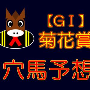 【GⅠ】菊花賞 穴馬予想 展望