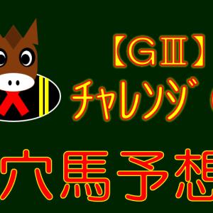 【GⅢ】チャレンジC 穴馬特化予想 展望