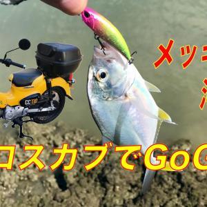 クロスカブでメッキ釣り[沖縄]