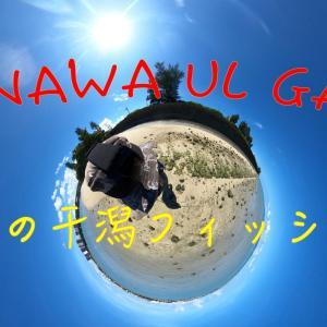 灼熱のウルトラライトゲーム[沖縄]