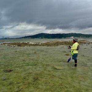 雨のデイキャンプ&シガヤーダコ釣りへ