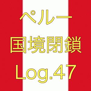 【外出自粛中におすすめな作品!】ペルー国境閉鎖【足止め Log.47】