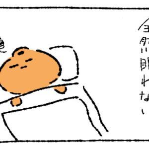 【四コマ】眠れない時はどうするのが一番いいのかね