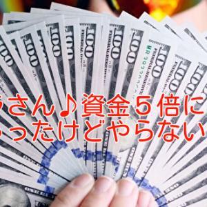 【エクスカシーファーム】クラさん♪資金5倍になっちゃったけどやらないの?笑