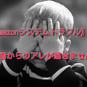 【Amazonシステムトラブル】購入者からのアレが届きません!!