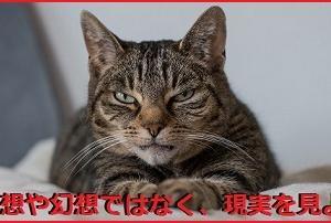 ◆厳罰求む 「外人犯罪」 〈7〉 ◆