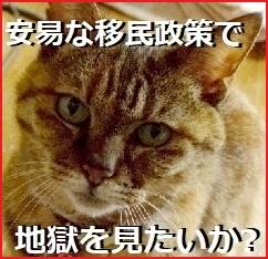 ◆厳罰求む 「外人犯罪」 〈8〉 ◆