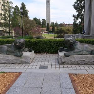 UC Berkeley: キャンパス内で見た光景